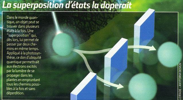 Particule quantique